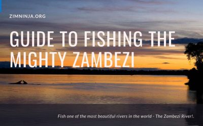 Zambezi River Fishing