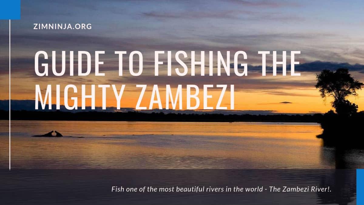 Zambezi River Fishing